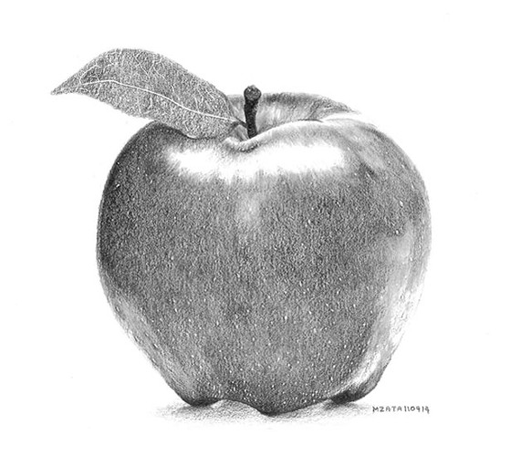 Drawn apple #5