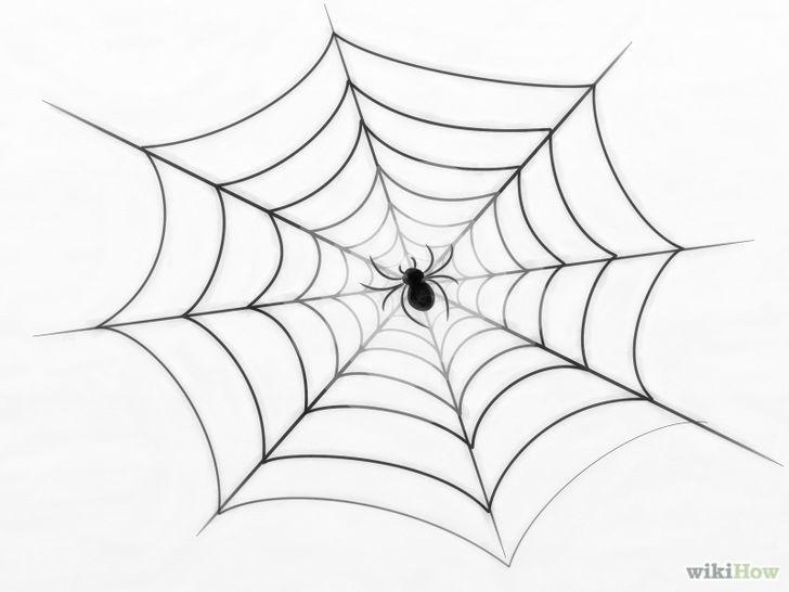 Drawn spider web wet A Draw Spider Web