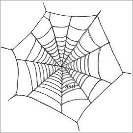 Drawn spider web cartoon Web Drawing Spider