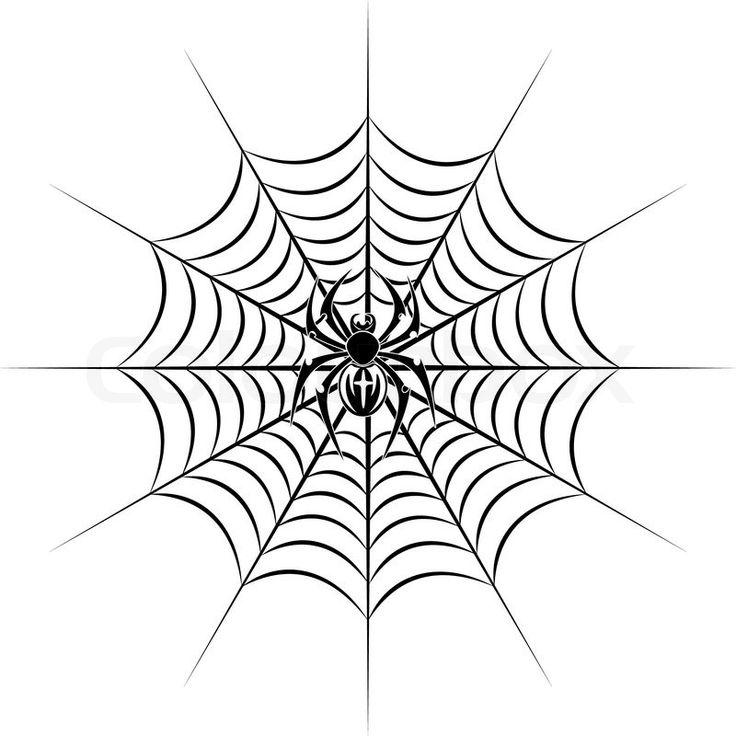 Drawn spider web net Best drawing tattoo on spider