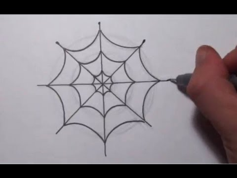 Drawn spider web wet  Spider Draw How To
