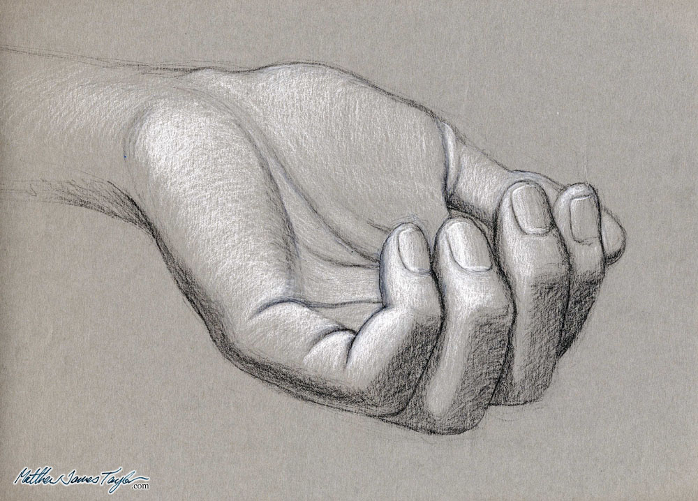 Drawn hand black and white Charcoal paper study: rendered and