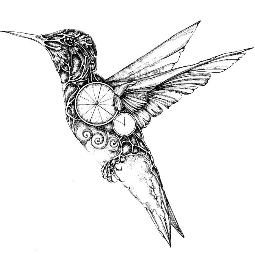 Drawn hummingbird cute Bored Drawn Mechanical Ink Birdmachine