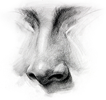 Drawn amd nose  by Step Drawing How