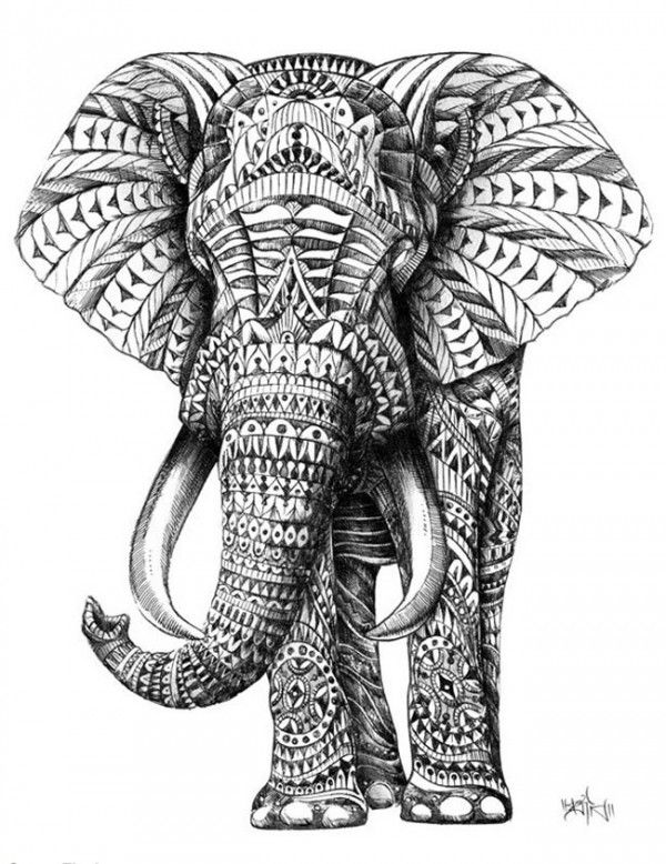 Drawn asian elephant Artwork on Indian this elephant