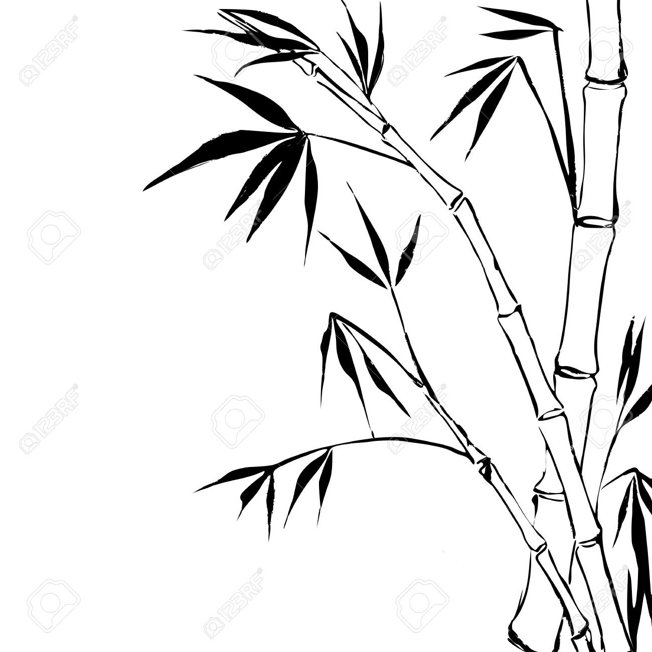 Drawn background bamboo #2