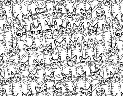 Drawn background cat #4