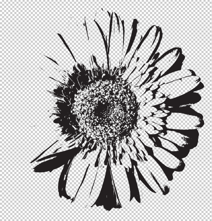 Drawn background flower designer With Drawing Color How your