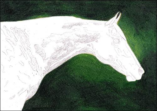 Drawn background pencil sketch #4