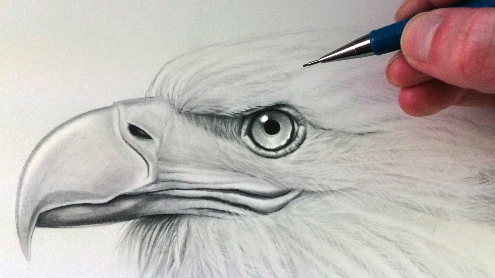 Drawn smoke eagle YouTube to Eagle  Draw