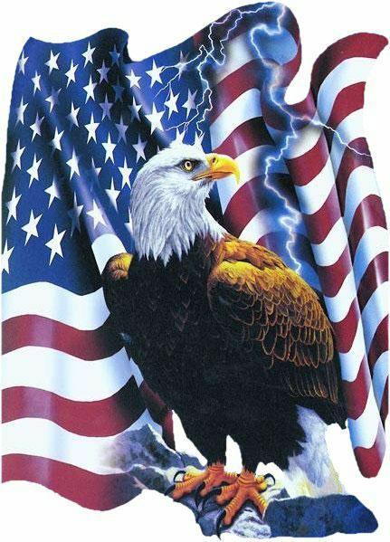 America clipart american eagle  S clipart symbol shirt