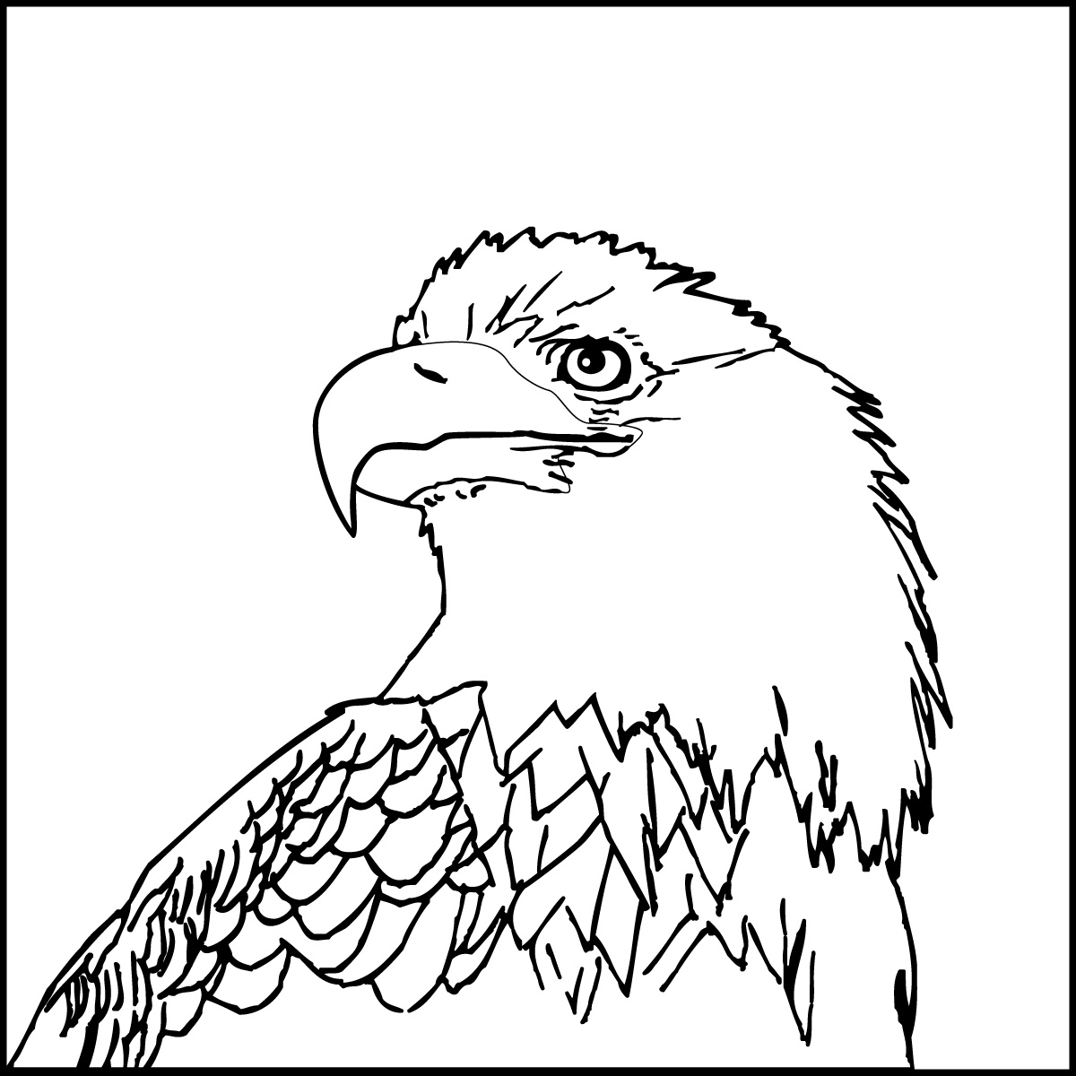 Book clipart eagle  coloring me coloring Coloring