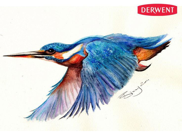 Drawn ballerina derwent inktense Art Kingfisher NashCreated ideas discover