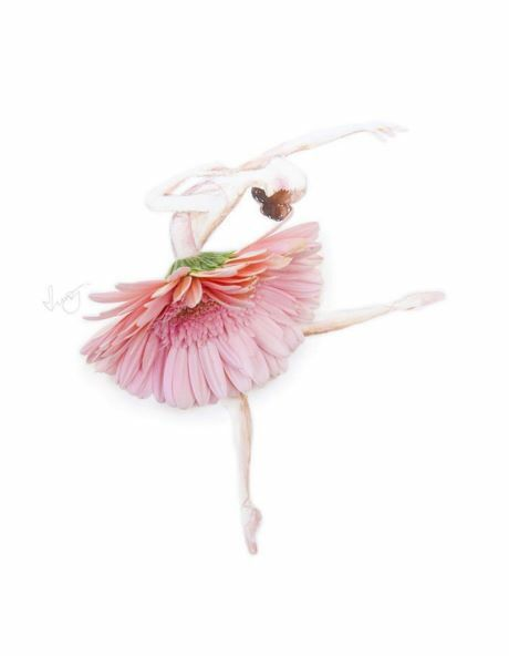 Drawn ballerine flower Images made art made with