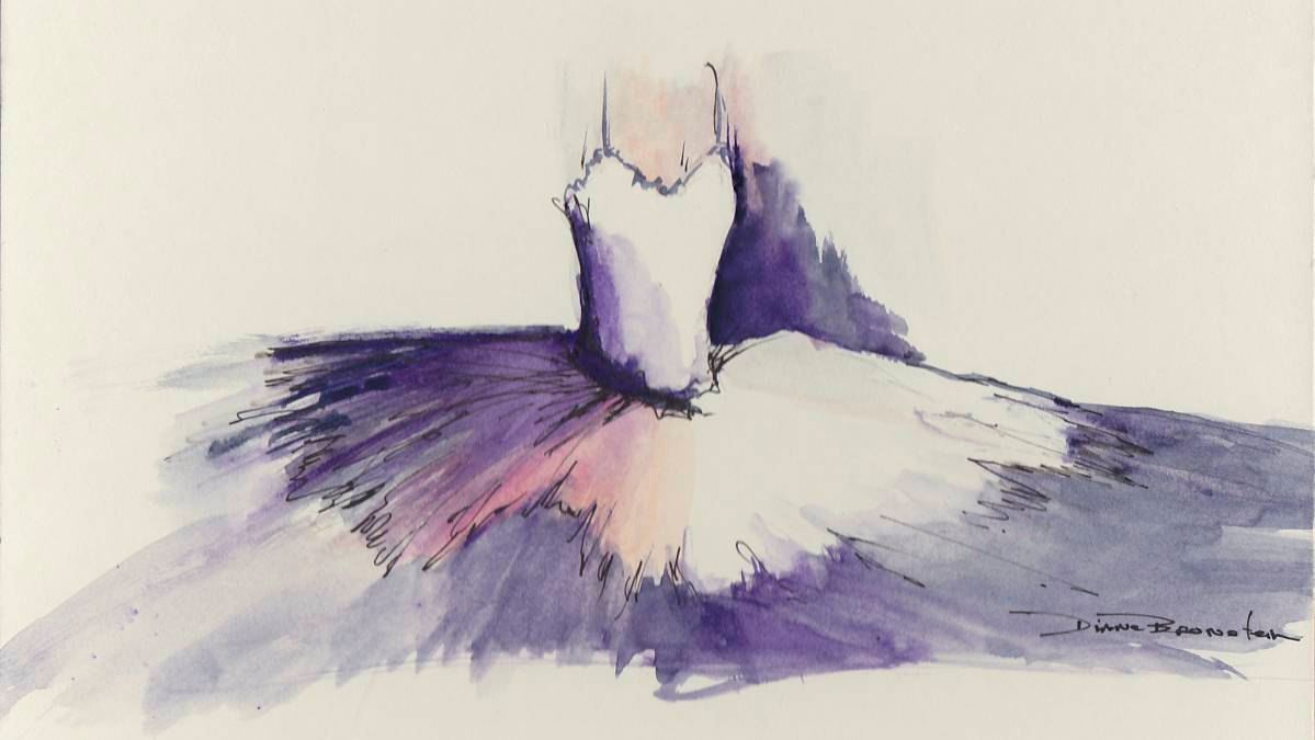 Drawn ballerine tutu Tutu details Item Painting