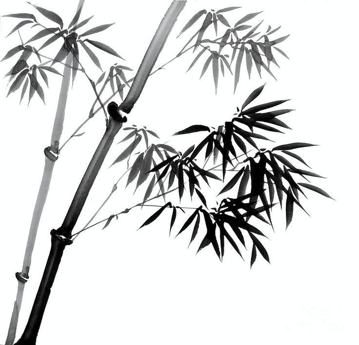 Drawn bamboo Bamboo 25+ Pinterest Catherine drawing