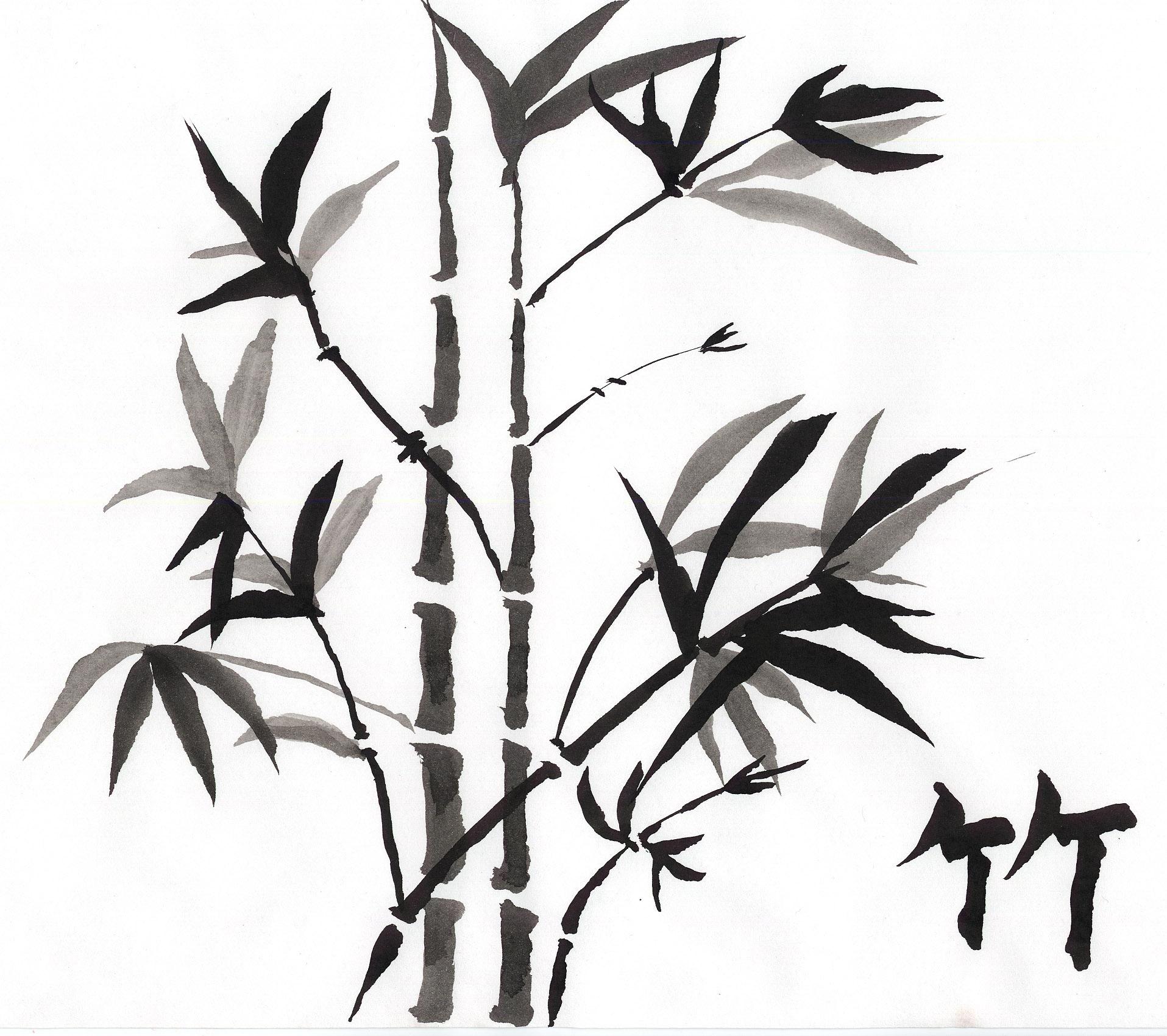 Drawn bamboo Bamboo Shoots Jeri · by