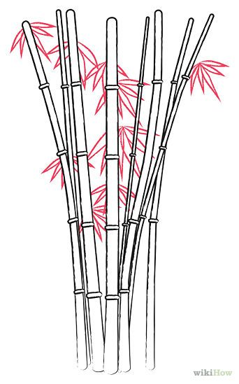 Drawn bamboo Draw Chinese ideas  Bamboo