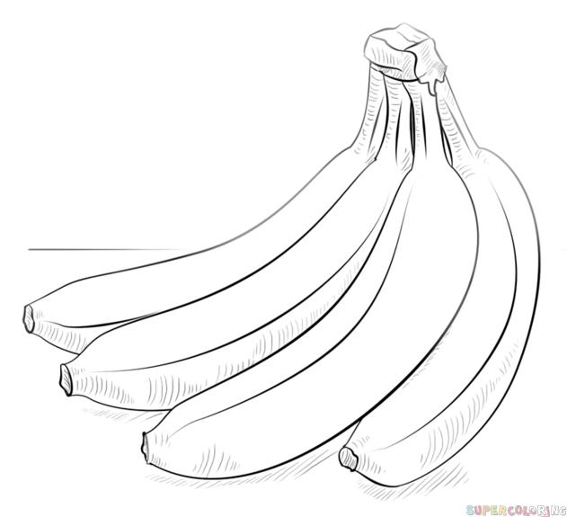 Drawn banana Step of draw bananas bananas