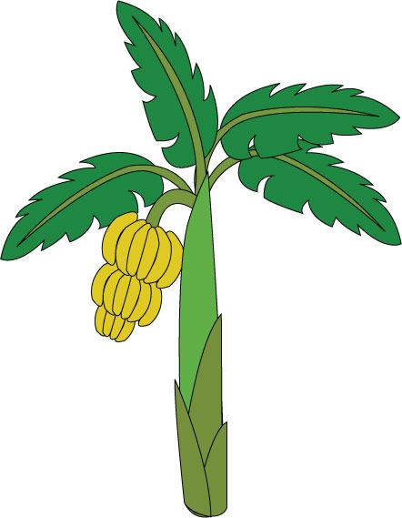 Banana clipart papaya And Tree Tree Cliparts Inspiration