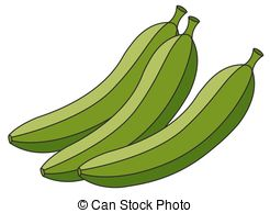 Banana clipart green banana  5 bananas Healthy