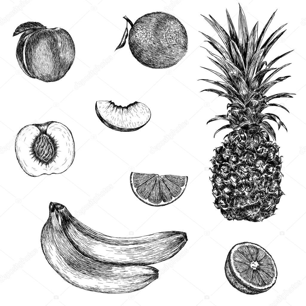 Drawn orange  — orange Sketch pineapple