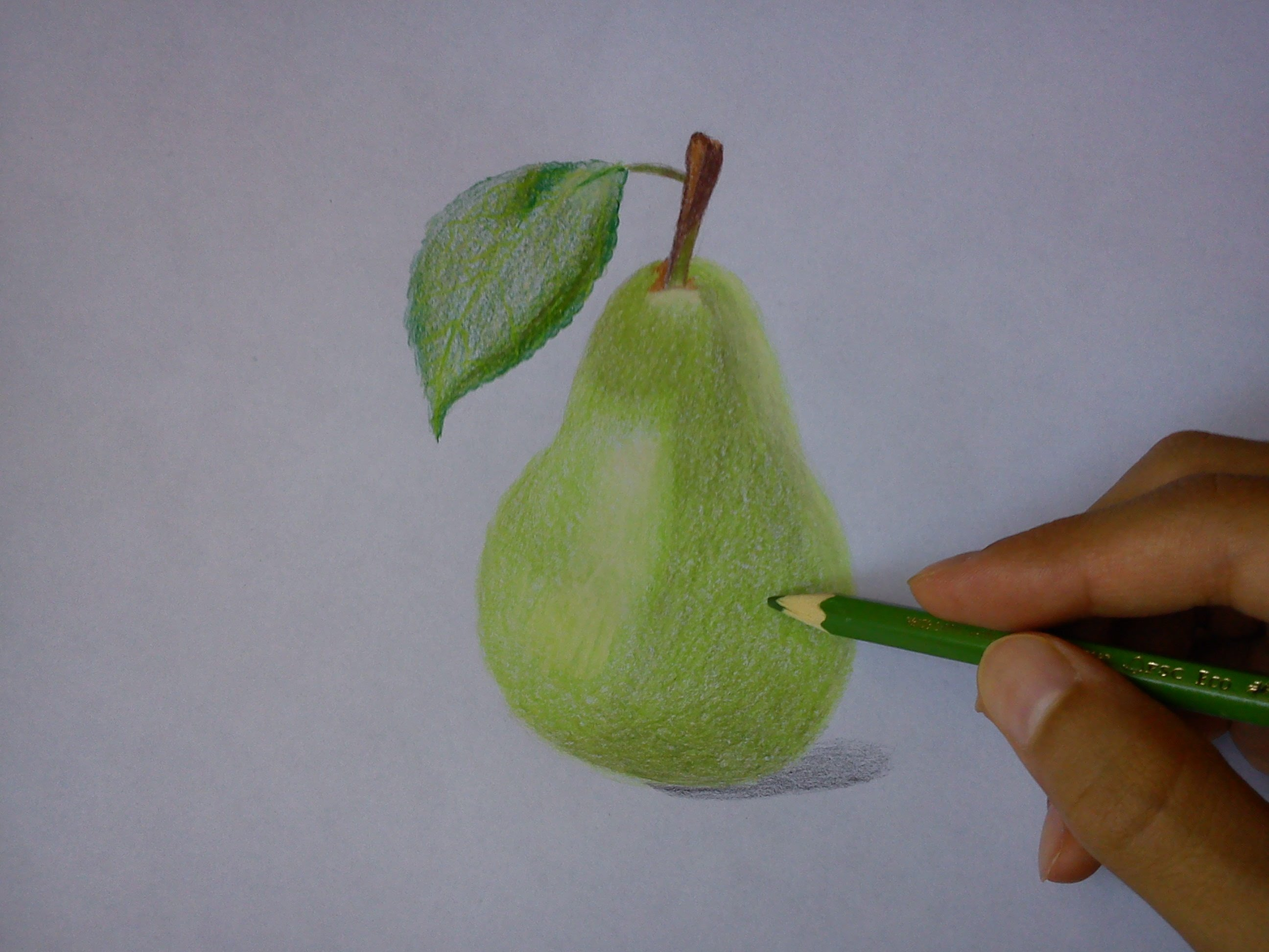Drawn pear easy Realistic draw How Drawing to