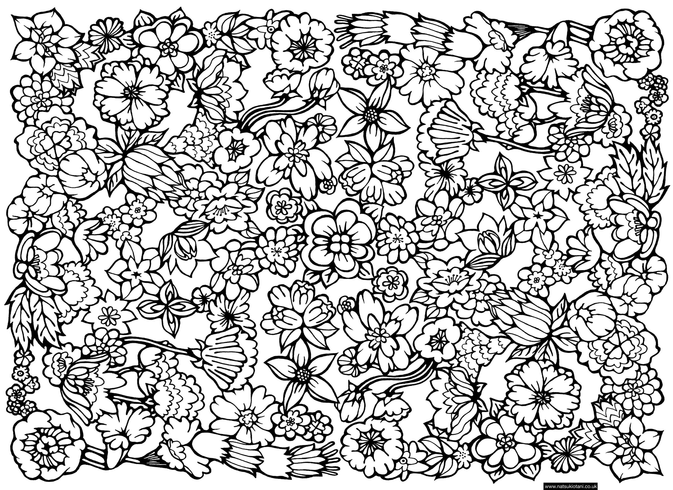 Drawn barbie flower Coloring Pattern Pages Cars Barbie