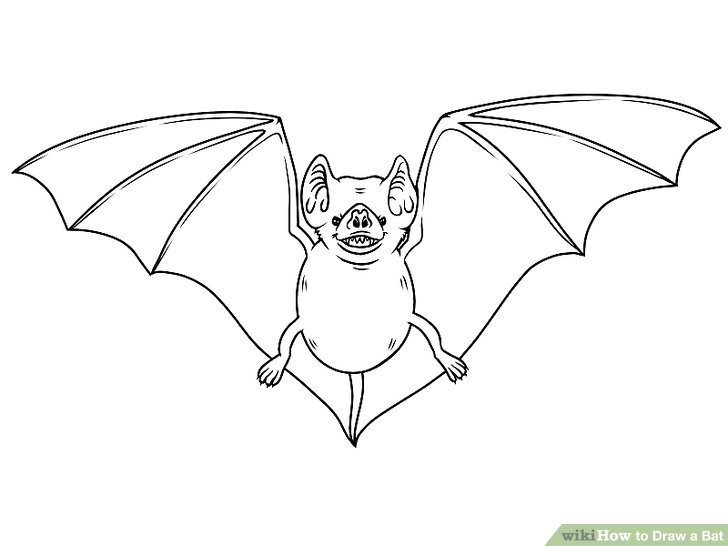 Drawn bat Step Bat Draw (with Draw