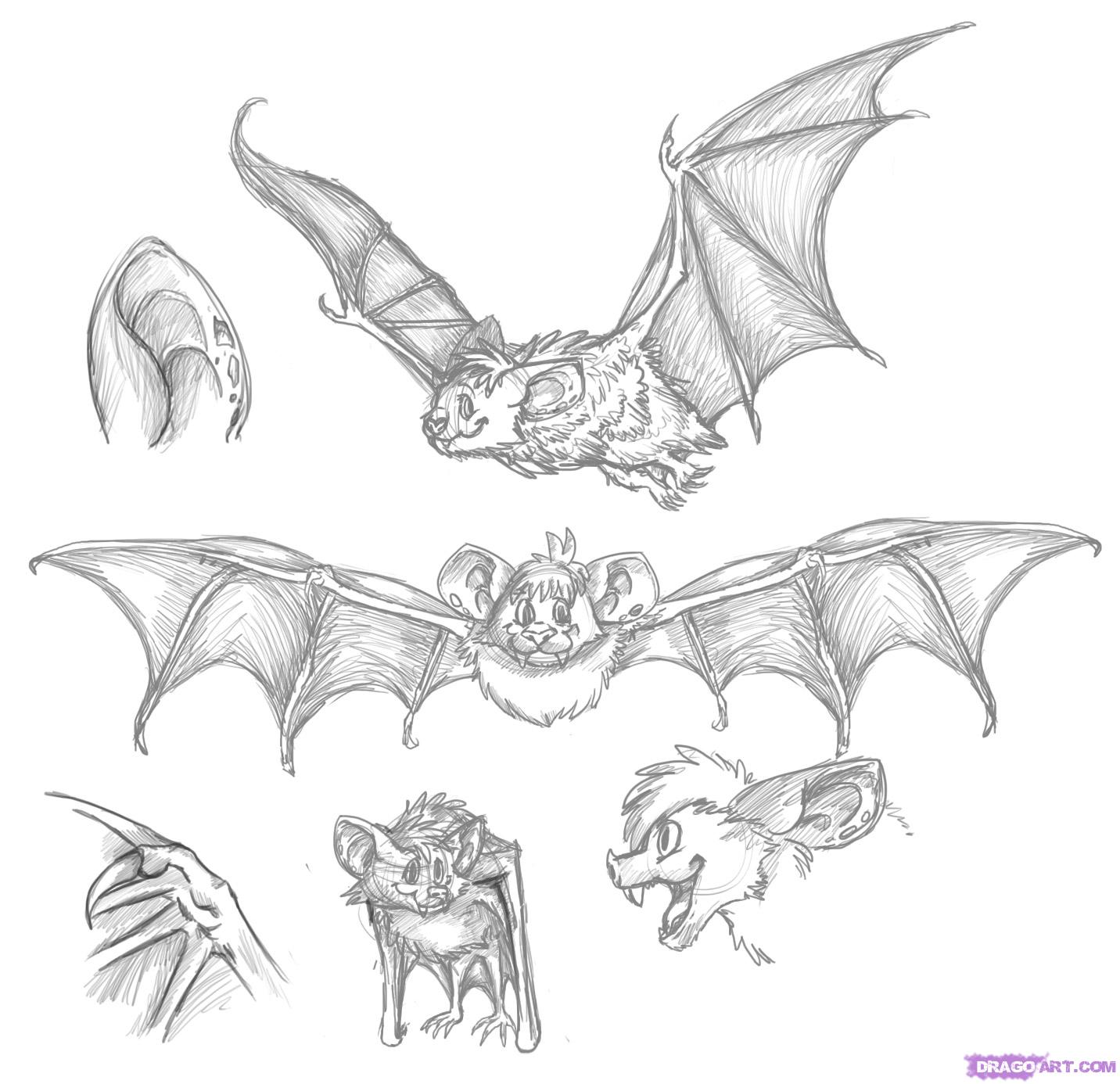 Drawn bat Bat Bat Dawn a Sheets