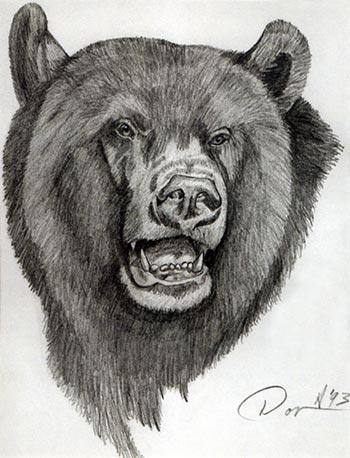 Drawn animal graphite drawing #4