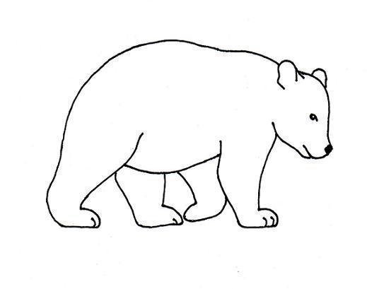 Drawn bear By Samantha by Drawing –