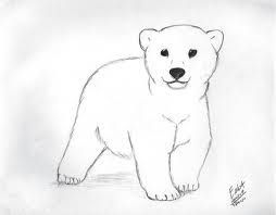 Drawn polar  bear adorable baby Ideas bear 20+ idea: Pinterest