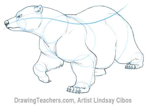 Drawn polar  bear fish cartoon Cartoon Polar drawing bear Bear