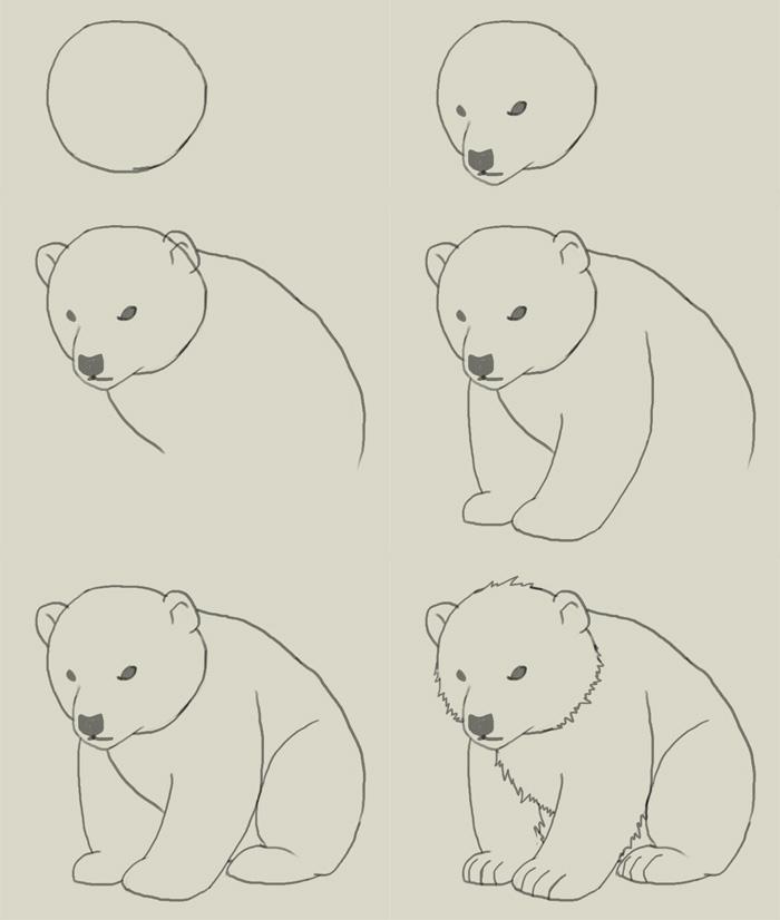 Drawn polar  bear adorable baby On images ideas 25+ Best