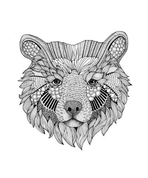 Drawn bear sketch On Bear Advertise Beauty DIY