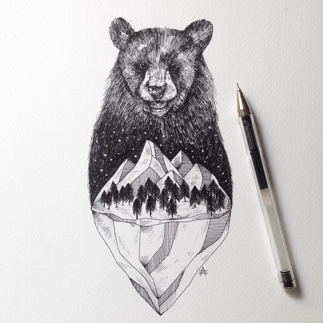 Drawn bear sketch  Search drawing realistic bears