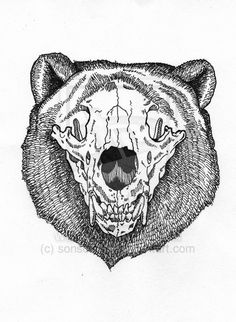 Drawn polar  bear skull On Bear sonsofvolo Bears by