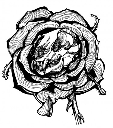 Drawn skeleton halloween Grizzly Rose drawings Piña Skull