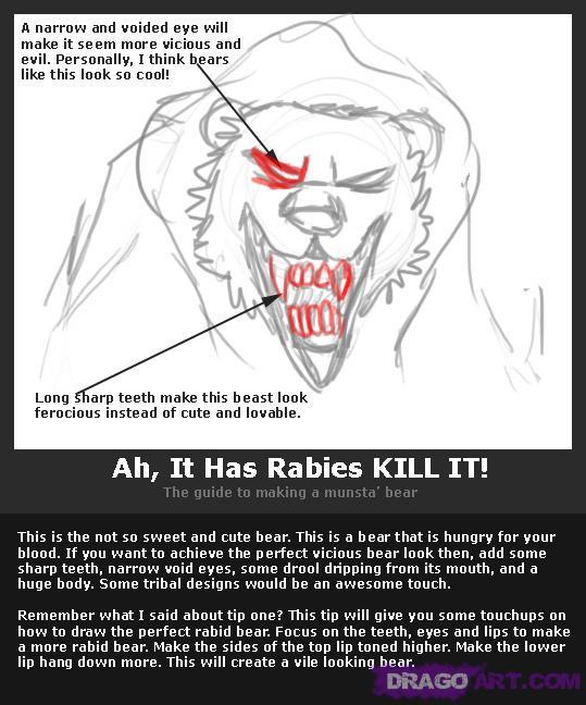 Drawn rabbid bear By Cartoon bear Animals How