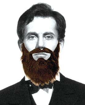 Drawn beard fake Fancy strangely 17 Beards» Pinterest