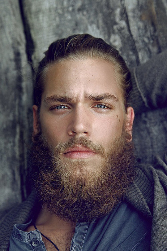 Drawn beard thick eyebrow 'male' bearded • Posts References