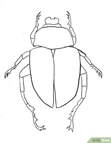 Drawn beatle A Step a (with Scarab