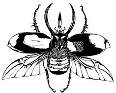 Drawn beelte Emily Beetle Large Flight by