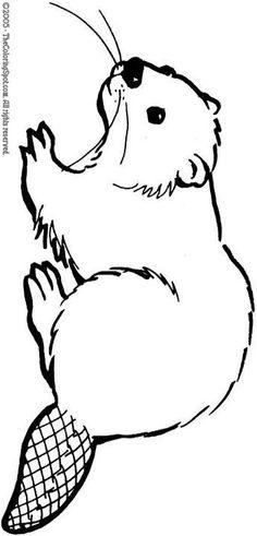 Drawn beaver TO on Robot animals Crafts
