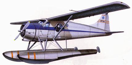 Drawn aircraft airplane pilot DeHavilland Havilland Drawing Beaver
