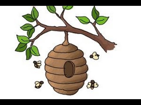 Bee Hive clipart tree drawing Beehive YouTube draw a to