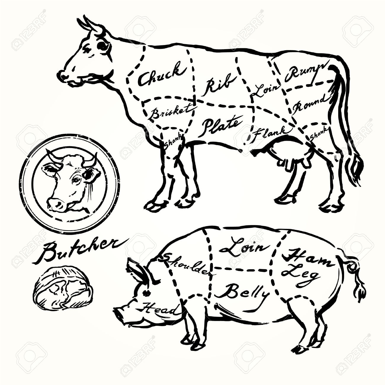 Drawn beef Set meat butcher beef and
