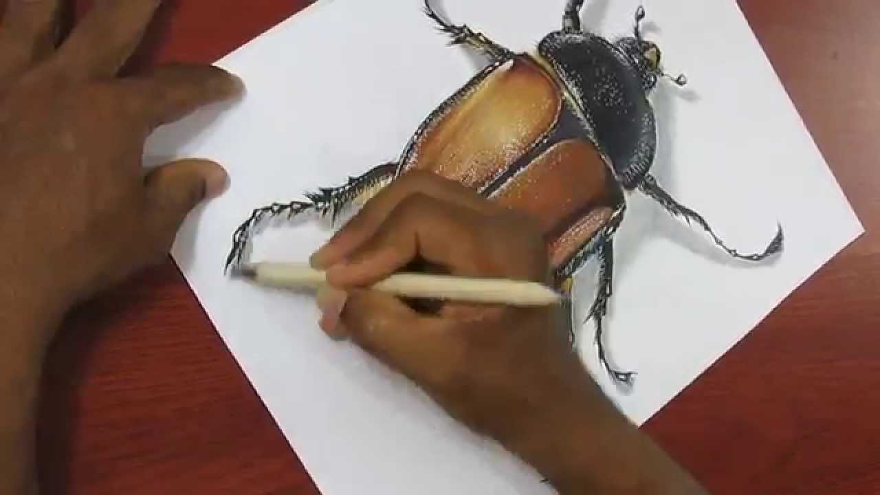 Drawn insect realistic Realistic How  a YouTube