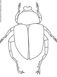 Drawn bugs beetle Dung 11 Drawing Social Beetles
